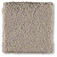 Shaw Floors Anso Premier Dealer Great Effect I 12′ Mountain Mist 00103_Q4327