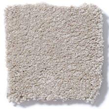Shaw Floors Anso Premier Dealer Great Effect I 12′ Oatmeal 00104_Q4327