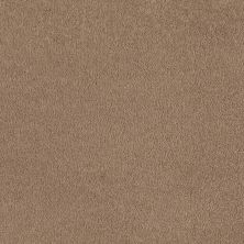 Shaw Floors Anso Premier Dealer Great Effect I 12′ Adobe 00108_Q4327