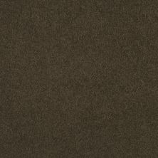 Shaw Floors Anso Premier Dealer Great Effect I 12′ Tropic Vine 00304_Q4327