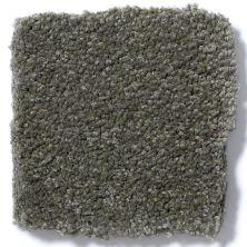 Shaw Floors Anso Premier Dealer Great Effect I 12′ Alpine Fern 00305_Q4327
