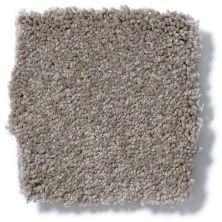 Shaw Floors Anso Premier Dealer Great Effect I 12′ Chinchilla 00306_Q4327