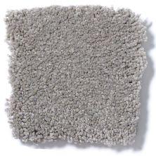 Shaw Floors Anso Premier Dealer Great Effect I 12′ London Fog 00501_Q4327