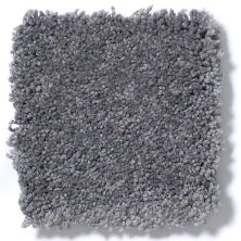Shaw Floors Anso Premier Dealer Great Effect I 12′ Slate 00502_Q4327