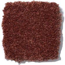 Shaw Floors Anso Premier Dealer Great Effect I 12′ Spanish Tile 00601_Q4327