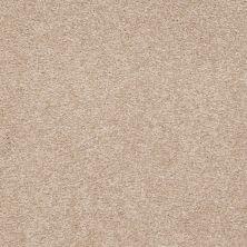 Shaw Floors Anso Premier Dealer Great Effect III 12′ Adobe 00108_Q4331