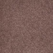 Shaw Floors Anso Premier Dealer Great Effect III 12′ Warm Oak 00709_Q4331