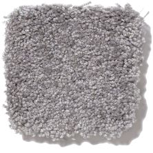 Shaw Floors Queen Our Delight III Pewter 00501_Q4346