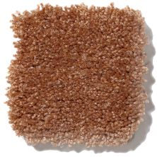 Shaw Floors Queen Our Delight III Soft Copper 00600_Q4346