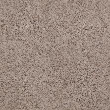 Shaw Floors Queen Great Approach (s) Birch 00109_Q4467