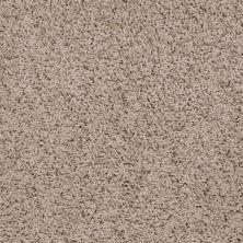 Shaw Floors SFA Alamar (s) Leather 00107_Q4531