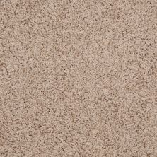 Shaw Floors SFA Alamar (s) Dried Apple 00108_Q4531