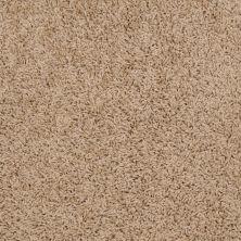 Shaw Floors SFA Alamar (s) Haystack 00200_Q4531
