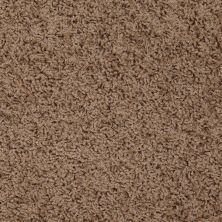 Shaw Floors SFA Alamar (s) Pottery 00700_Q4531