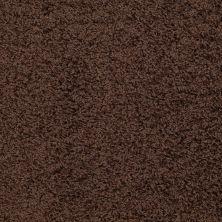 Shaw Floors SFA Alamar (s) Buccaneer 00701_Q4531