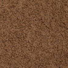 Shaw Floors SFA Alamar (s) Toffee 00703_Q4531