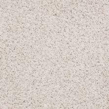 Shaw Floors Anso Premier Dealer Galileo (s) Buttermilk 00100_Q4534