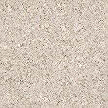 Shaw Floors Anso Premier Dealer Galileo (s) Rich Cream 00101_Q4534