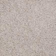 Shaw Floors Anso Premier Dealer Galileo (s) Soft Shell 00102_Q4534