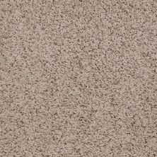 Shaw Floors Anso Premier Dealer Galileo (s) Leather 00107_Q4534