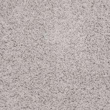 Shaw Floors Anso Premier Dealer Galileo (s) Twilight 00500_Q4534