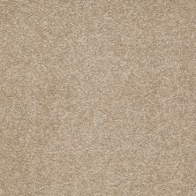 Shaw Floors Shaw Floor Studio Bright Spirit II 12′ Sahara 00205_Q4650