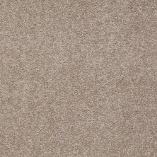 Shaw Floors Shaw Floor Studio Bright Spirit II 12′ Chinchilla 00306_Q4650