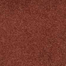 Shaw Floors Shaw Floor Studio Bright Spirit II 12′ Spanish Tile 00601_Q4650