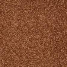 Shaw Floors Shaw Floor Studio Bright Spirit II 12′ Dark Amber 00602_Q4650