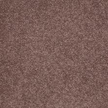 Shaw Floors Shaw Floor Studio Bright Spirit II 12′ Warm Oak 00709_Q4650