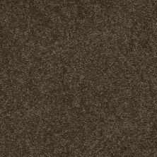 Shaw Floors Shaw Floor Studio Bright Spirit III 12′ Tropic Vine 00304_Q4652