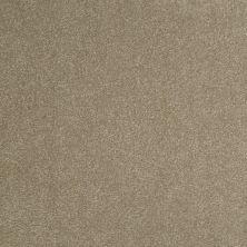 Shaw Floors Shaw Floor Studio Bright Spirit III 12′ Chinchilla 00306_Q4652