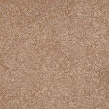 Shaw Floors Shaw Floor Studio Bright Spirit III 12′ Muffin 00700_Q4652