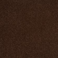 Shaw Floors Shaw Floor Studio Bright Spirit III 12′ Coffee Bean 00711_Q4652
