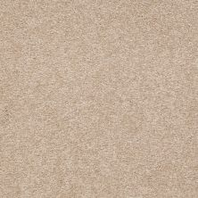 Shaw Floors Shaw Floor Studio Bright Spirit III 15′ Adobe 00108_Q4653