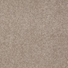 Shaw Floors Shaw Floor Studio Bright Spirit III 15′ Chinchilla 00306_Q4653