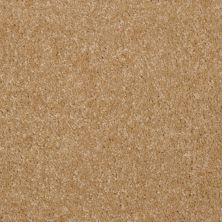 Shaw Floors SFA Versatile Design I 12′ Straw Hat 00201_Q4688