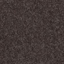 Shaw Floors SFA Versatile Design I 12′ Ship Yard 00502_Q4688
