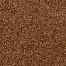 Shaw Floors SFA Versatile Design I 12′ Brass Button 00704_Q4688