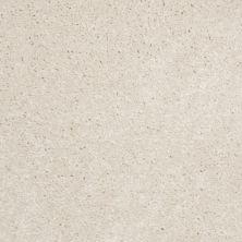 Shaw Floors SFA Versatile Design II Snow 00100_Q4689
