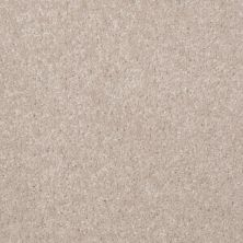 Shaw Floors SFA Versatile Design II Cloud 00102_Q4689
