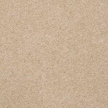 Shaw Floors SFA Versatile Design II Ecru 00103_Q4689
