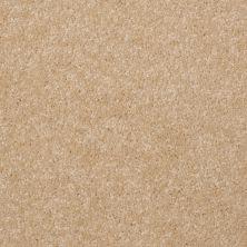 Shaw Floors SFA Versatile Design II Silk 00104_Q4689