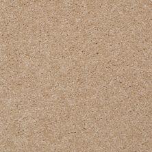 Shaw Floors SFA Versatile Design II Sugar Cookie 00105_Q4689