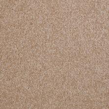 Shaw Floors SFA Versatile Design II Muffin 00106_Q4689