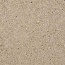 Shaw Floors SFA Versatile Design II Linen 00107_Q4689