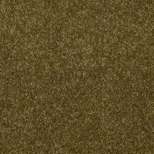 Shaw Floors SFA Versatile Design II Green Apple 00303_Q4689