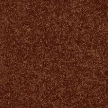 Shaw Floors SFA Versatile Design II Gingerbread 00602_Q4689