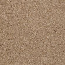 Shaw Floors SFA Versatile Design II Sea Grass 00700_Q4689