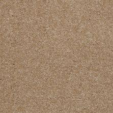 Shaw Floors SFA Versatile Design II Sea Grass 00700_Q4689